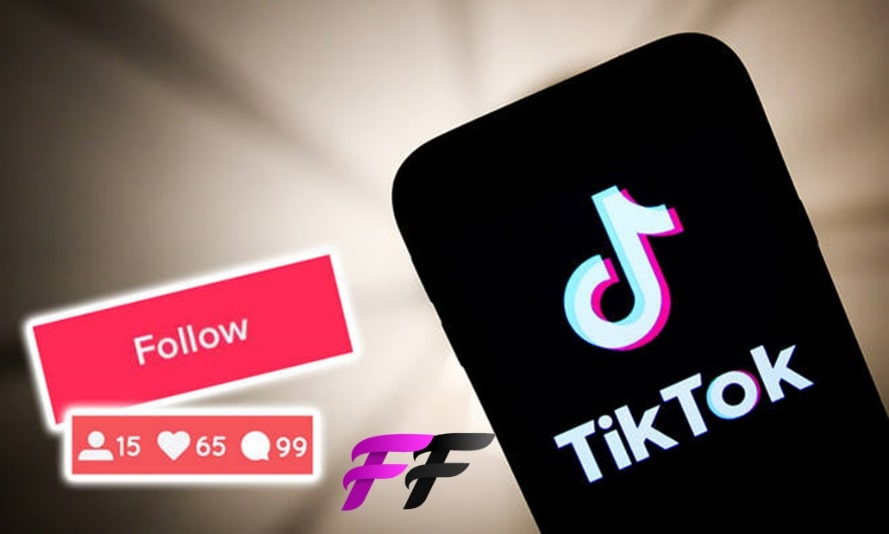 TikTok followers PayPal