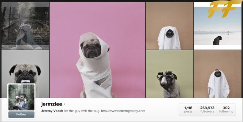Summary funny Instagram pages